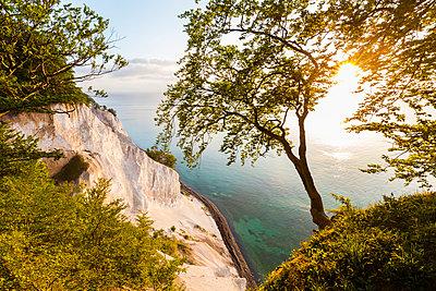 Denmark, Mon Island, Mons Klint, Chalk cliffs - p300m1166104 by Werner Dieterich