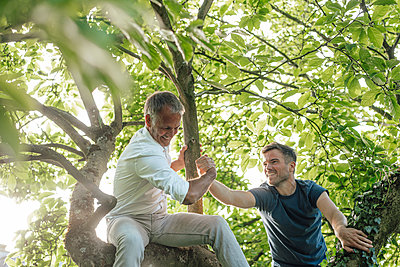 Son climbing tree while holding father's hand during sunny day - p300m2275154 by Gustafsson