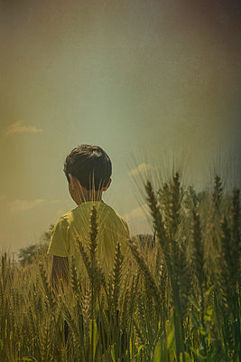 Little boy standing in a wheat field  - p794m1035042 by Mohamad Itani