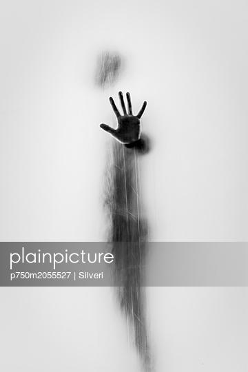 p750m2055527 by Silveri