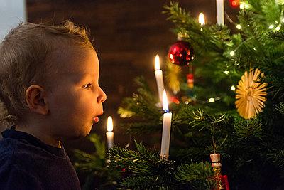 Kleiner Junge am Weihnachtsbaum - p427m1556436 von Ralf Mohr