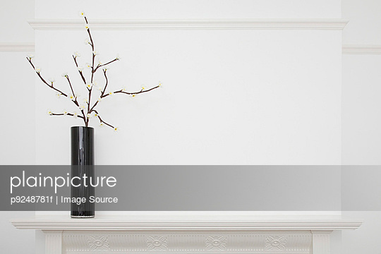 Vase on a mantlepiece - p9248781f by Image Source