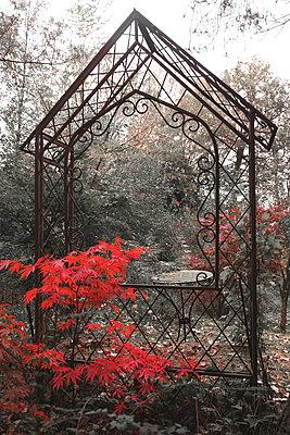 Herbst - p1016m907447 von Jochen Knobloch