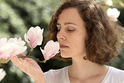 Magnolia - p3790348 by Scheller