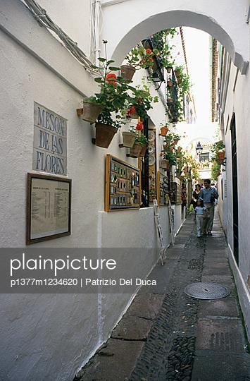 p1377m1234620 von Patrizio Del Duca