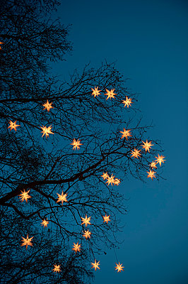 Chain of lights - p949m951775 by Frauke Schumann