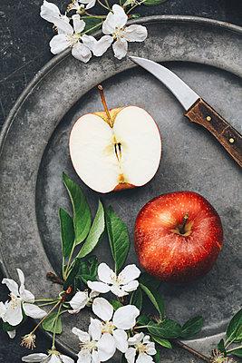 Frische Äpfel - p1006m1441785 von Danel