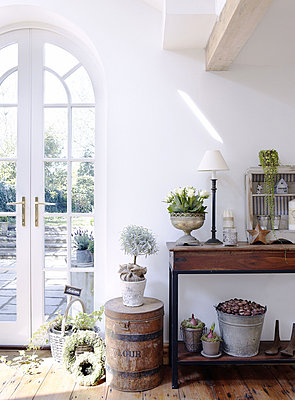 Console table with houseplants and arched patio door - p349m790335 by Brent Darby