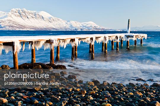 Frozen Pier - p1256m2099005 by Sandra Jordan