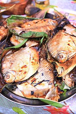Fisch auf dem Markt - p045m1008167 von Jasmin Sander