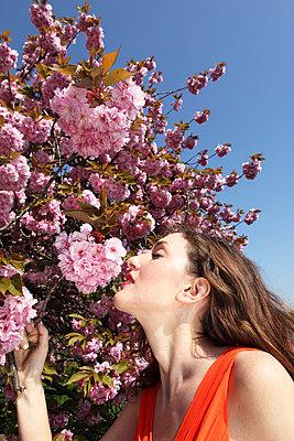Frühlingsduft - p045m658407 von Jasmin Sander