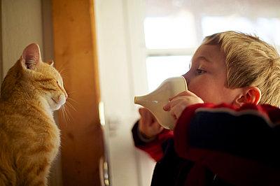 boy teasing cat - p1169m1032733 by Tytia Habing