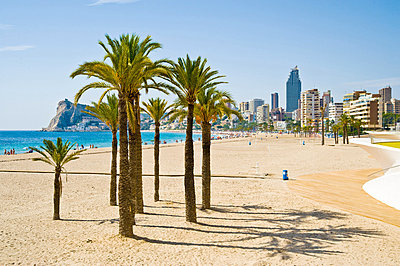 Benidorm, Costa Blanca, Spain - p9242068f by Image Source