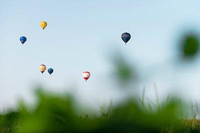 Hot-air balloons - p335m854888 by Andreas Körner