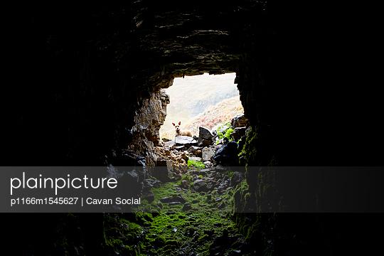 p1166m1545627 von Cavan Social