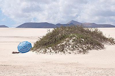 Fuerteventura - p6460173 von gio
