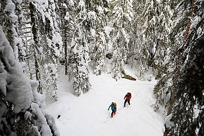 High angle view of two people cross country skiing - p575m1074581f by Fredrik Schlyter