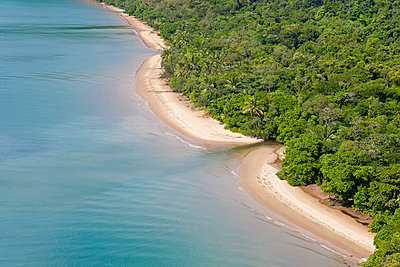 Aerial view of rain forest and beach, Daintree Forest, Daintree National Park, nr Cairns, Queensland, Australia - p651m860418 by Peter Adams photography
