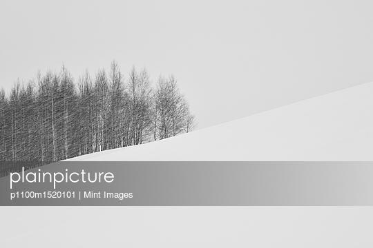 p1100m1520101 von Mint Images
