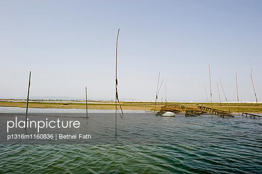 Lagune, Faro, Algarve, Portugal - p1316m1160836 von Bethel Fath