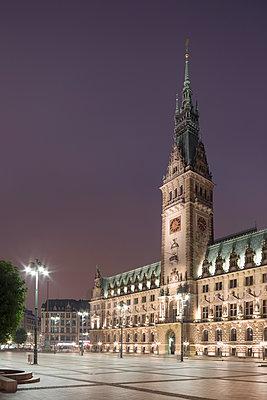 Rathaus Hamburg - p1222m1168736 von Jérome Gerull