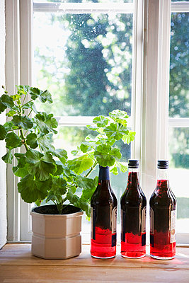 Bottles with liqueur on window sill - p5756046f by Kippel, Karna, Lina