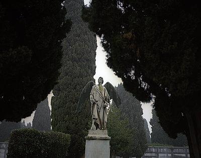 Angel sculpture at graveyard - p945m1468166 by aurelia frey