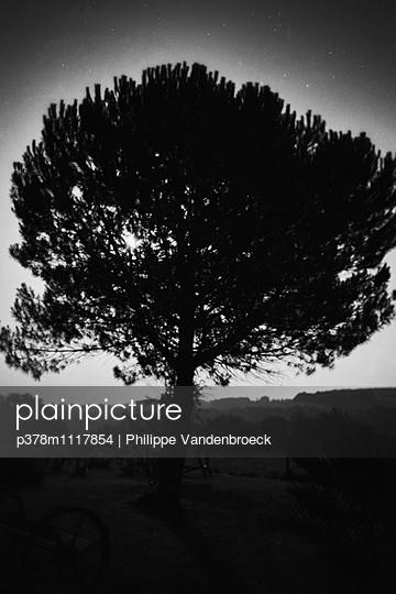 p378m1117854 von Philippe Vandenbroeck