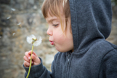 Portrait of little girl blowing blowball - p300m929972f by Larissa Veronesi
