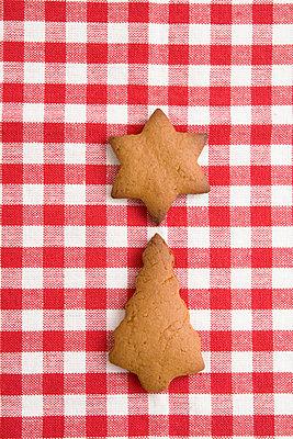 Weihnachtsbaum und Stern - p4470376 von Anja Lubitz