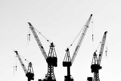 Cranes in harbor - p488m1048456 by Bias