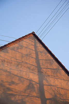 Shadow of a tree on house facade - p580m1503128 by Eva Z. Genthe