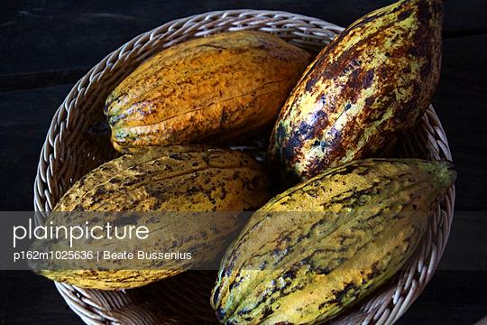 Kakaofrucht - p162m1025636 von Beate Bussenius