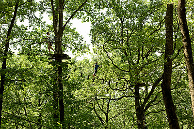 Ropes course - p445m1051413 by Marie Docher
