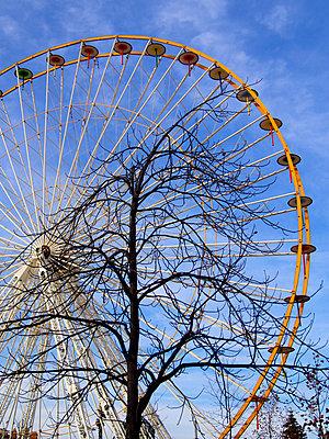 The ferris wheel.  - p813m956638 by B.Jaubert