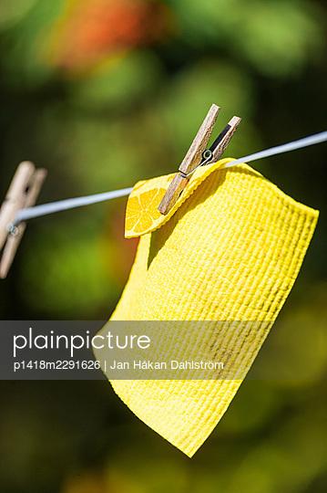 Dishrag on clothes line - p1418m2291626 by Jan Håkan Dahlström