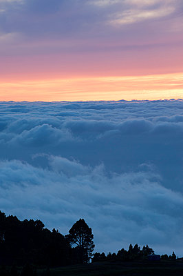 Sunset - p427m916702 by Ralf Mohr