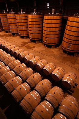 Vine in barrels - p5754499f by Hans Berggren