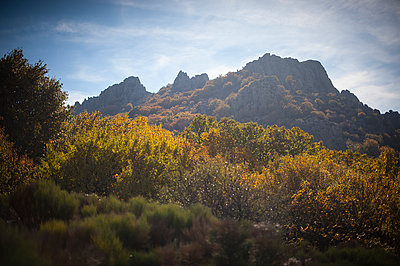 Mountain and forest in autumn - p1007m1144445 by Tilby Vattard
