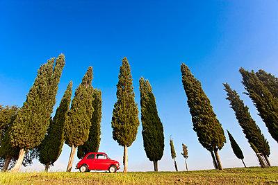 Fiat 500 - p1205m1106417 by Toni Anzenberger