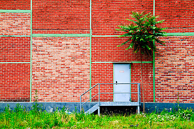 Red wall - p417m907055 by Pat Meise