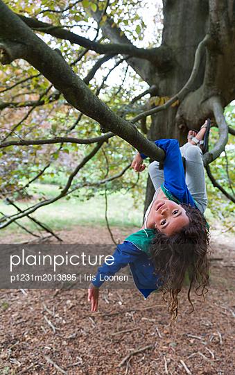 Mädchen klettert in einem Baum - p1231m2013895 von Iris Loonen