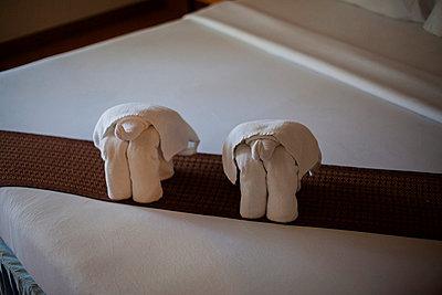 Handtuch in Elefantenform - p586m859173 von Kniel Synnatzschke