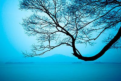 Westsee im Nebel - p1170m1441207 von Bjanka Kadic