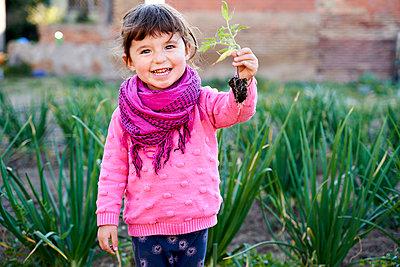 Portrait of happy toddler girl with small tomato plant in the garden - p300m2103008 von Gemma Ferrando