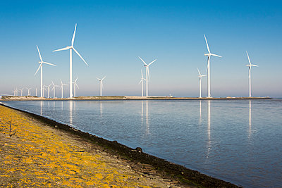 Wind farm on the waterfront - p1079m1137121 by Ulrich Mertens