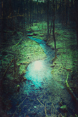 Germany, Remscheid, brook in forest - p300m1113487f by Dirk Wüstenhagen