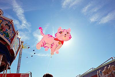 Fliegende Katze auf Jahrmarkt - p432m1225869 von mia takahara