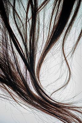 Strand of hair - p971m2284085 by Reilika Landen