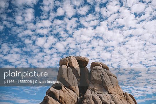 p1166m1555228 von Cavan Images